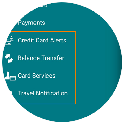Manage Credit Card Demo